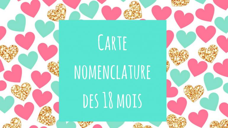 Cartes nomenclature dès 18 mois