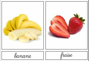 fruits-nomenclature