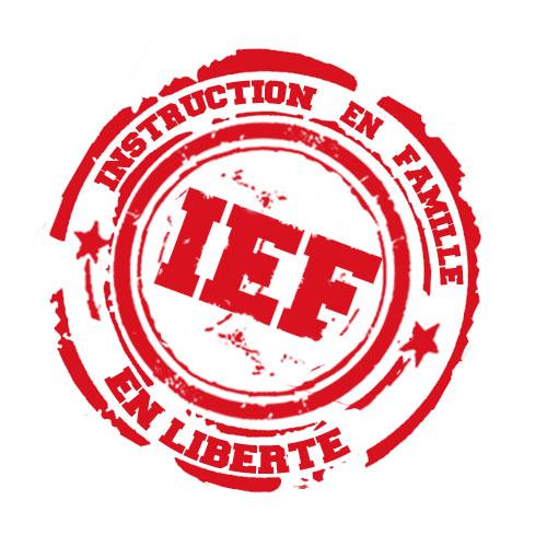 Prospectus Ief