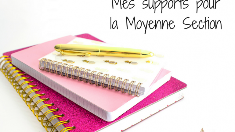 {Mes supports – Moyenne section 2016-2017}