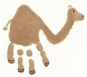 empreinte main chameau