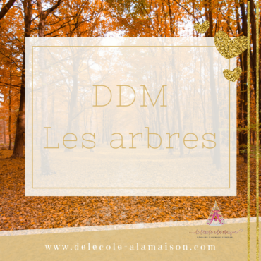 Séquence – DDM – les arbres