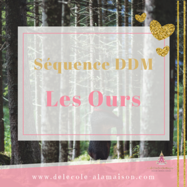 Séquence – ddm – L'ours