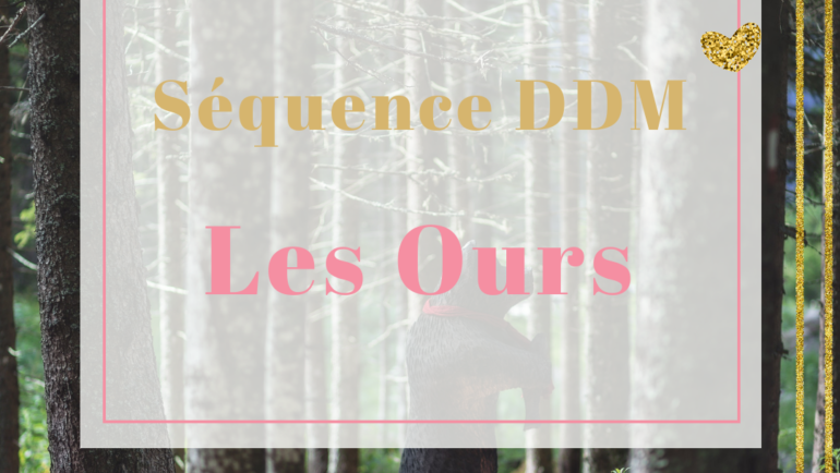 Séquence – ddm – L'ours