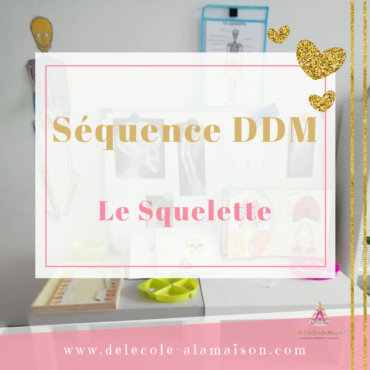 DDM – Le Squelette