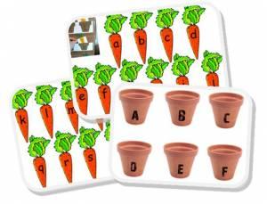 correspondance lettres carottes
