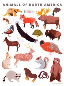 animals-of-north-america-poster-wall-decal-14_2