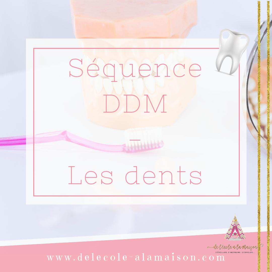 Séquence ddm – les dents