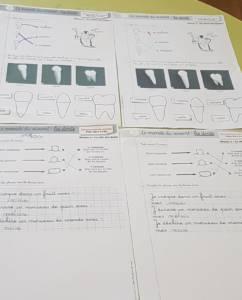 ada6fc57-21d8-41ec-b447-5ef79a406d9b