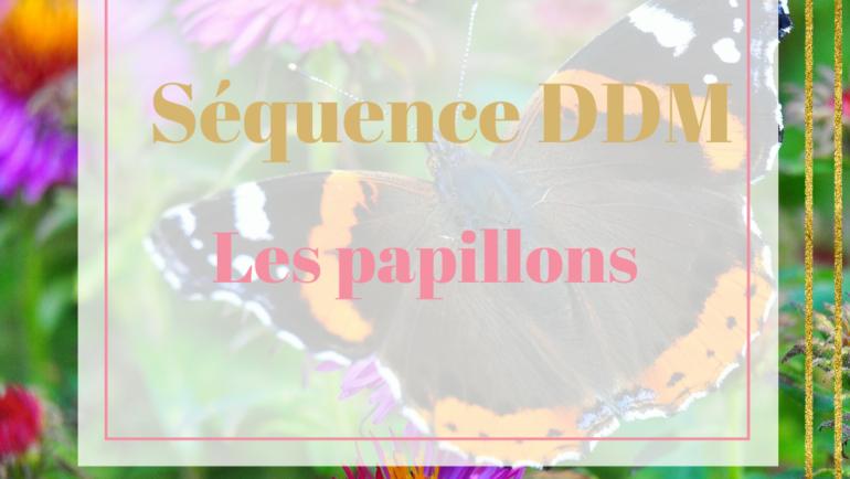 DDM – Les papillons